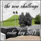 ColorKey2011